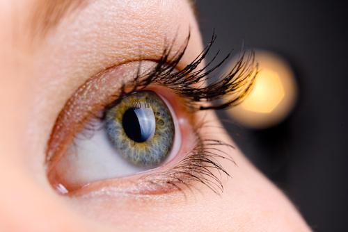 Long Island Eye Care Bayshore