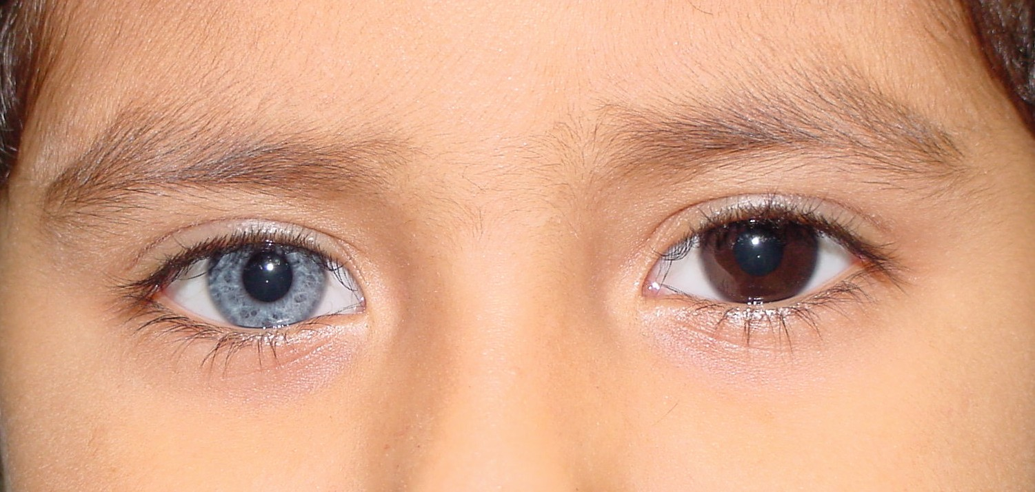 how to know your babies eye color